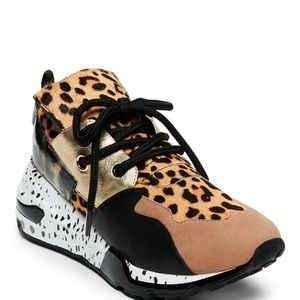 Shoes - Steven Madden Cliff (Animal Print)